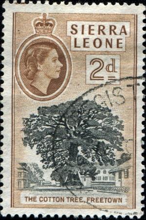 SIERRA LEONE - CIRCA 1956  A stamp printed in Sierra Leone shows Cotton tree, Freetown, circa 1956