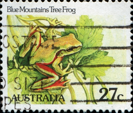AUSTRALIA - CIRCA 1982  A stamp printed in Australia, shows the Blue Mountains Tree Frog  Litoria citropa , circa 1982