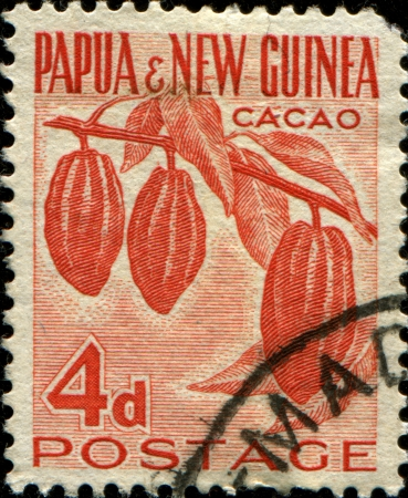 PAPUA NEW GUINEA - CIRCA 19520  A stamp printed in Papua New Guinea shows  cacao plant, circa 1952