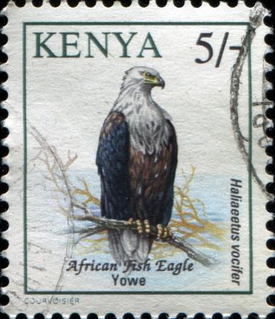KENYA - CIRCA 1993: Postage stamp printed in Kenya, shows a African Fish Eagle (Haliaeetus vocifer), circa 1993  Stock Photo - 17262120