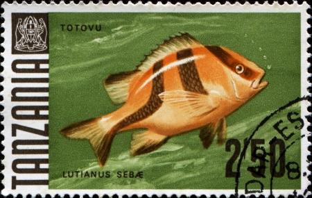 fish exhibition:  TANZANIA - CIRCA 1967  A stamp printed in Tanzania shows Emperor snapper - totovu - lutianus sebae, circa 1967