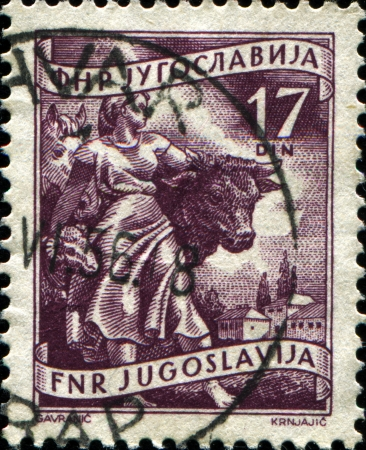 YUGOSLAVIA - CIRCA 1950  A stamp printed in Yugoslavia shows  Woman and farm animals, circa 1950