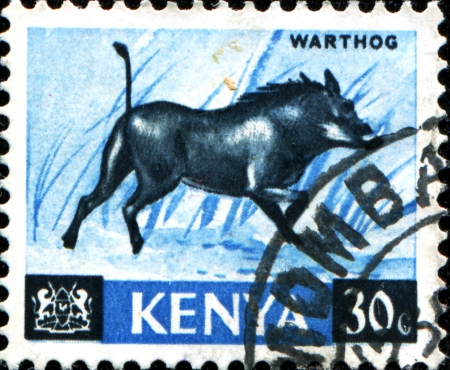 KENYA - CIRCA 1964  A stamp printed in Kenya shows warthog, circa 1964 Stock Photo - 17722525