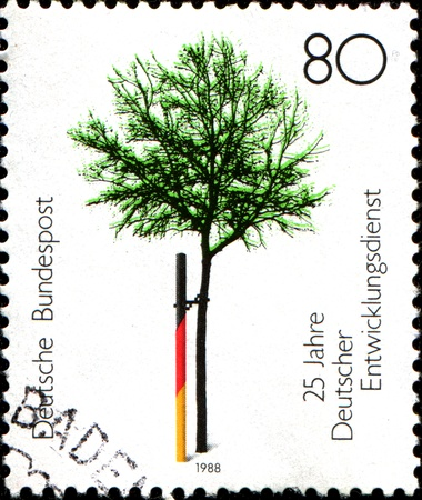 service tree: GERMANY - CIRCA 1977  A stamp printed in German Federal Republic dedicated 25th Anniv of German Volunteer Service, shows Tree supported by Stake in National Colours , circa 1977 Stock Photo