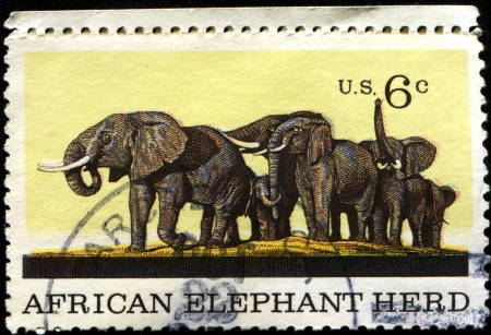 USA -CIRCA 1969  A stamp printed in United States of America shows African Elephant Herd, Natural History issue, Circa 1969 photo