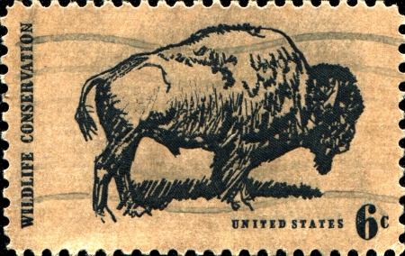 USA -CIRCA 1970  A stamp printed in United States of America shows bison, Wildlife Conservation issue, Circa 1970