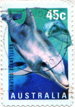postmail: AUSTRALIA - CIRCA 1998  A stamp printed in Australia shows Bottlenose Dolphin - Tursiops aduncus, circa 1998  Editorial