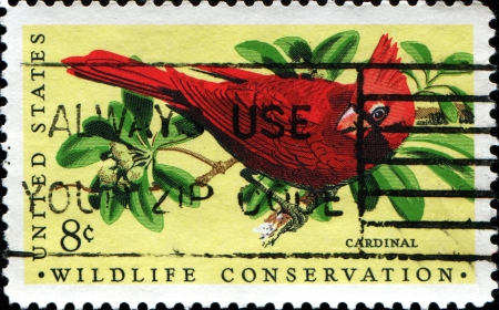 postmail: USA - CIRCA 1972  A stamp printed in United States of America shows Cardinal bird, Wildlife Conservation issue, circa 1972