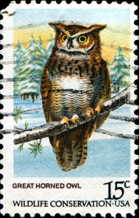 USA - CIRCA 1978: A stamp printed in United States of America shows Great Horned Owl, Wildlife Conservation issue, circa 1978  photo