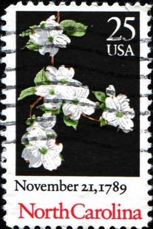 ratificaci�n: EE.UU. - alrededor de 19: Un sello impreso en los Estados Unidos de Am�rica dedicado al 200 aniversario de la ratificaci�n de la Constituci�n de Carolina del Norte, muestra una planta Cornus alba, circa 1989