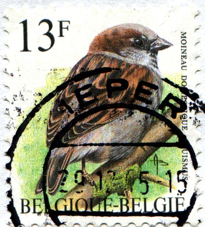 BELGIUM - CIRCA 1985  A stamp printed in Belgium shows Tree Sparrow, circa 1985 photo