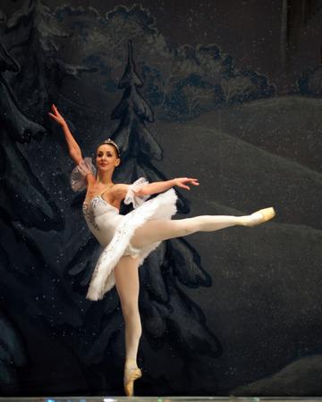 ballet hombres: Ucrania, Lugansk - 5 de febrero 2014: bailarines Donetsk Opera realizan el Ballet Cascanueces en Lugansk