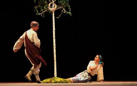 luhansk: UKRAINE, LUGANSK - MARCH 18, 2014  Ukrainian National Folk Dance Ensemble named After P  Virsky, who is considered best folkloric ballet dancer in country, performed a live show on stage in Lugansk