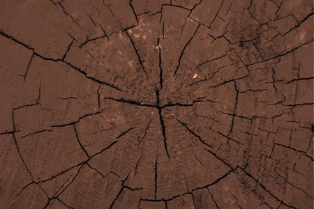 Wood log texture.
