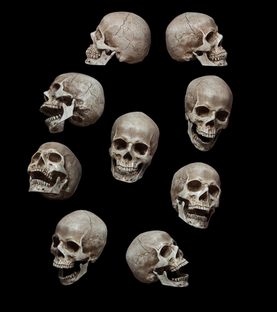 Nine old human skulls isolated over black background