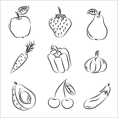 cebollas: Frutas y hortalizas  Vectores