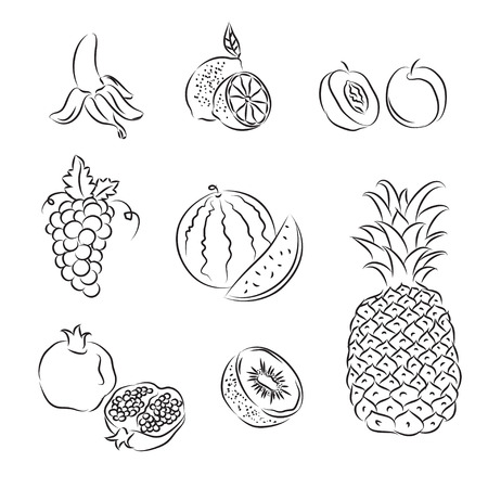 pineapple: Fruits Set
