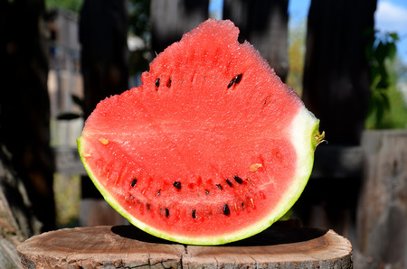 A skimpy of a juicy watermelon, standing on a cut of an abiotic tree.