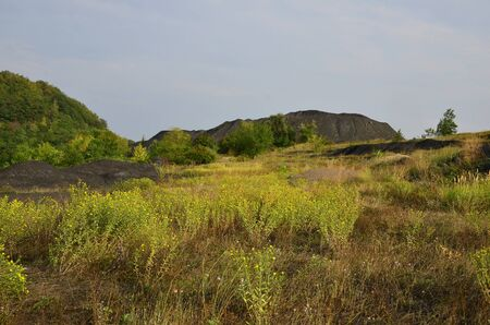 Heap and spontaneously lying heaps of sludge against a background of green vegetation