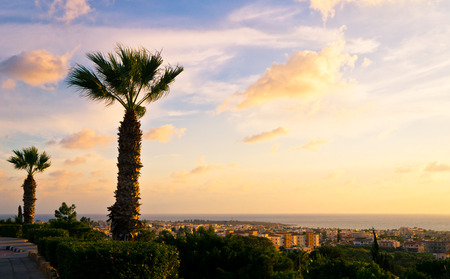 View of Paphos city coastline from a high vantage point at sunset photo