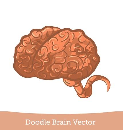 doodle brain