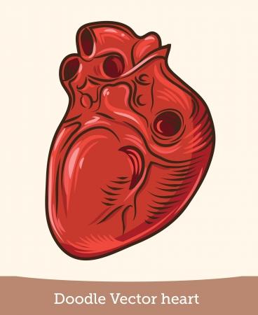 heart realistic Stock Vector - 19864139