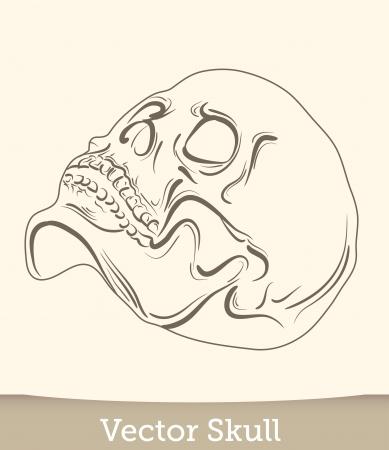 vector ink skull Stock Vector - 19823237