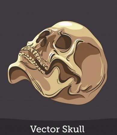 dark face: vector ink skull