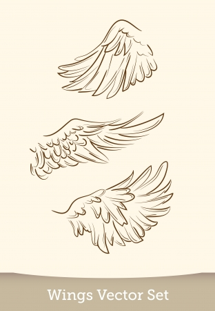 hand drawn wings: vector wings set
