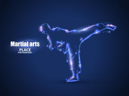 Motion design. Silhouette of a karateka doing standing side kick.