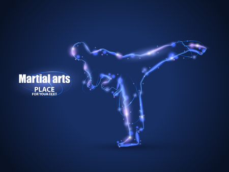 Motion design. Silhouette of a karateka doing standing side kick.