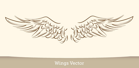 Sketch illustration of wings on white background.