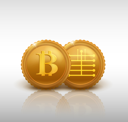 two bitcoins - bit coin BTC the new virtual money, vector illustration. Illustration