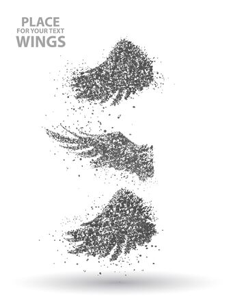 Particles of Wings set, full  enterprising across significance vector illustration. Illustration