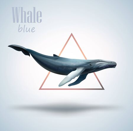 Blue whale isolated on white background with triangle as decorative element Illustration