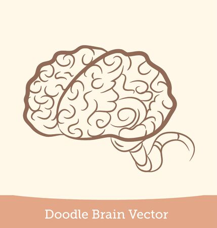 doodle brain  isolated on white background. Vector EPS10