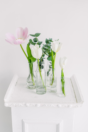 abreast: close-up Tulips in bottles on white background studio