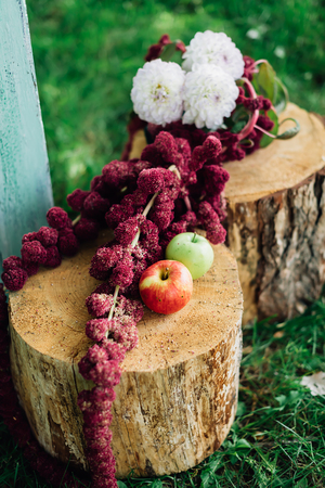countrified: Flowers and apples lying on the stumps Stock Photo