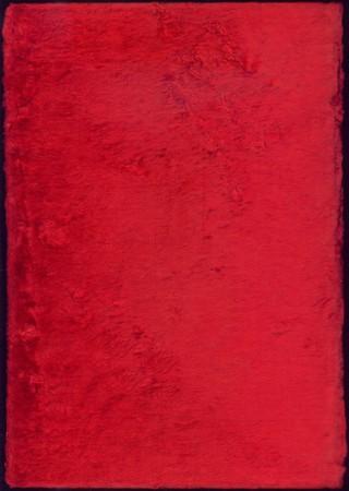 velvet texture: Trama di velluto in colore rosso  Archivio Fotografico