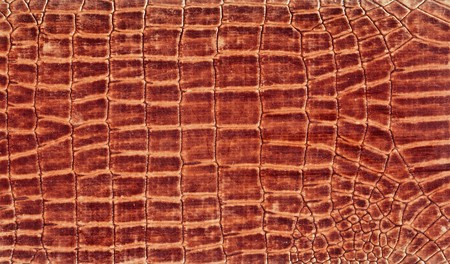 Skin texture in brown color Stock Photo - 7442139