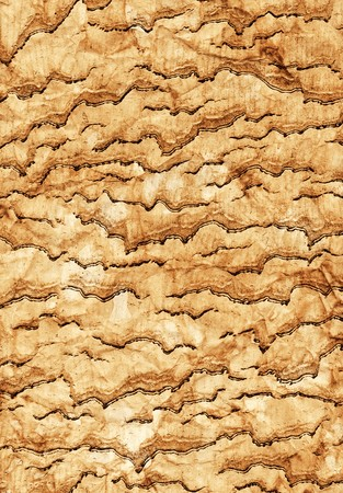 creasy: Grunge texture in vertical composition