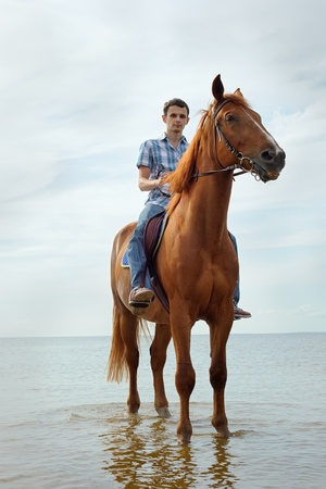 thoroughbred: Man riding on a brown horse