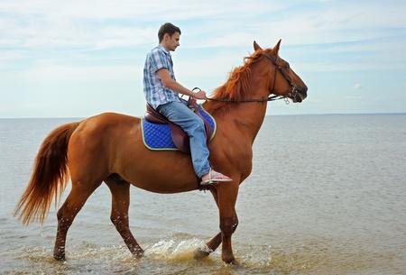 caballo de mar: Hombre montado en un caballo marr�n Foto de archivo