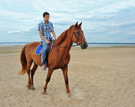 caballo jinete: Hombre montado en un caballo marrón Foto de archivo