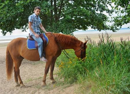 charro: Hombre montado en un caballo marr�n Foto de archivo