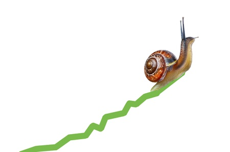 gastropoda: Snail on chart currency isolated on white Stock Photo