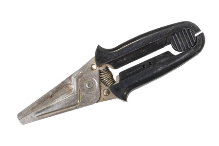 Garden secateurs isolated on white background photo