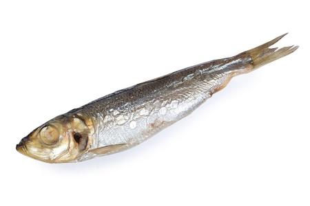 sprat: Fish food isolated on white background