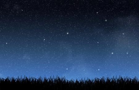 sterrenhemel: Gras onder de nachtelijke hemel Stockfoto