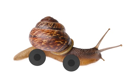 snail on wheels isolated on white background photo